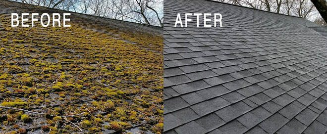 roof moss removal westwood before and after