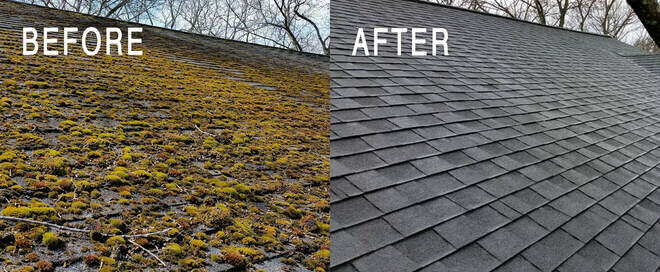 roof moss removal canton before and after